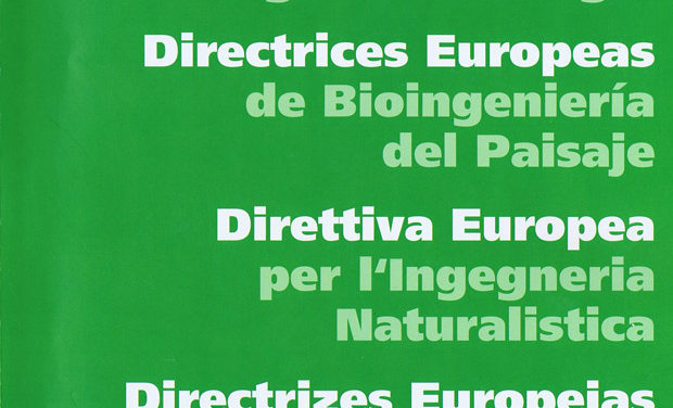 Directrices Europeas