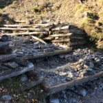 Bergwaldprojekt en el Pirineo Catalán
